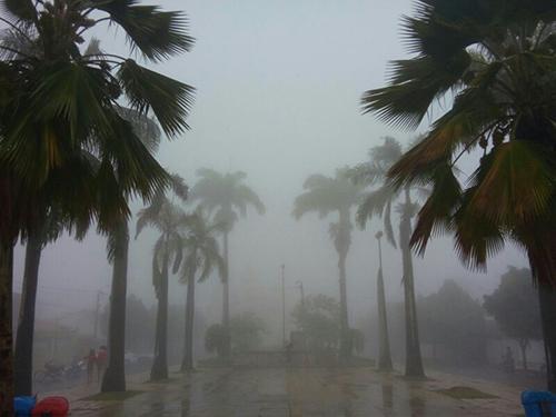 Chuvas mudam a paisagem na região serrana