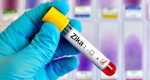 Relação entre o Zika Vírus e o aumento de nascimentos de crianças com microcefalia mudou o perfil de risco do Zika de uma leve ameaça para algo de proporções alarmantes.