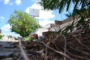 Acúmulo de lixo preocupa pais e servidores (Foto: Cacau)