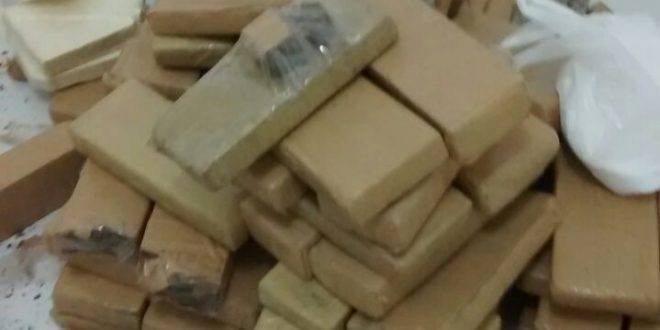 Apreensão de drogas representa prejuízo milionário para o tráfico