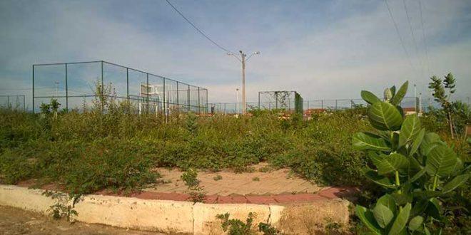 ed313375c3fc6 Mato e Lixo tomam conta de praça do conjunto Cidade Oeste em Mossoró ...