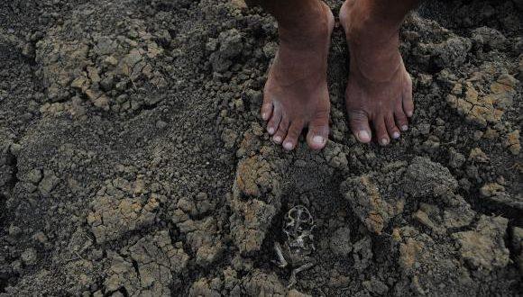 Governo Federal libera R$ 790 milhões para ações de combate à seca no Nordeste