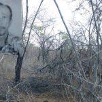 Ossada humana é localizada próximo a fábrica de cimento em Mossoró