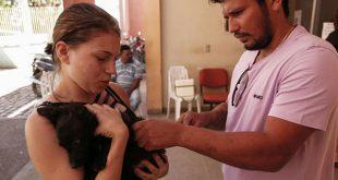 A meta é vacinar 80% do público-alvo, formado por 28.990 cães e 12.690 gatos (Foto: Divulgação Prefeitura de Mossoró).