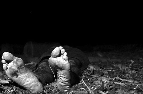 Thadeu Brandão – Homicídios no RN: Observatório da Violência atualiza dados