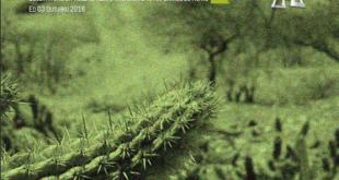 capa-outubro