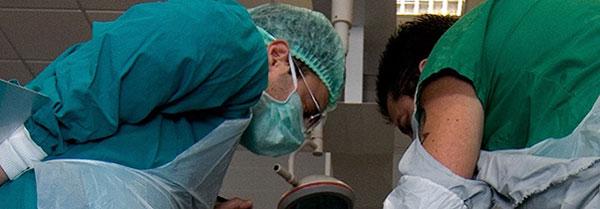ITEP realiza 3º chamada de médicos legistas aprovados em processo seletivo