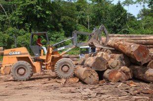 Desmatamento de 2016 na Amazônia é o maior desde 2008, segundo levantamento do Ipam (Foto: Arquivo/Agência Brasil).
