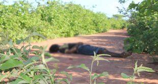 O corpo apresenta marca de tiros de escopeta calibre 12 no pescoço (Foto: O Câmera).