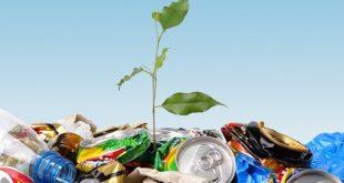 Natal terá semana dedicada a sustentabilidade ambiental