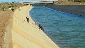 Expectativa é de que água chegue ao Rio Grande do Norte até o mês de dezembro
