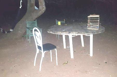 Bebedeira teria iniciado no quintal no decorrer do dia
