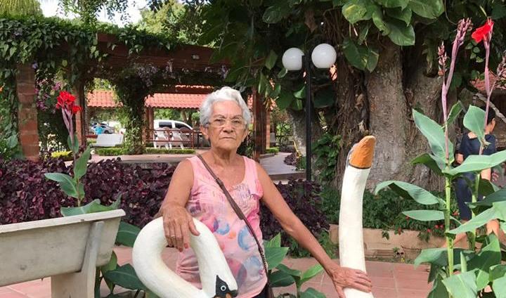 Amanhã é dia de agradecer pelo dom da vida do amor maior das nossas vidas dona Dirce Costa, para ela, saúde e paz. Parabéns!