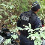 Polícia Militar recupera oito veículos roubados em Mossoró