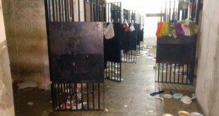 Grades de celas foram serradas. (Foto: Sindasp-CE)
