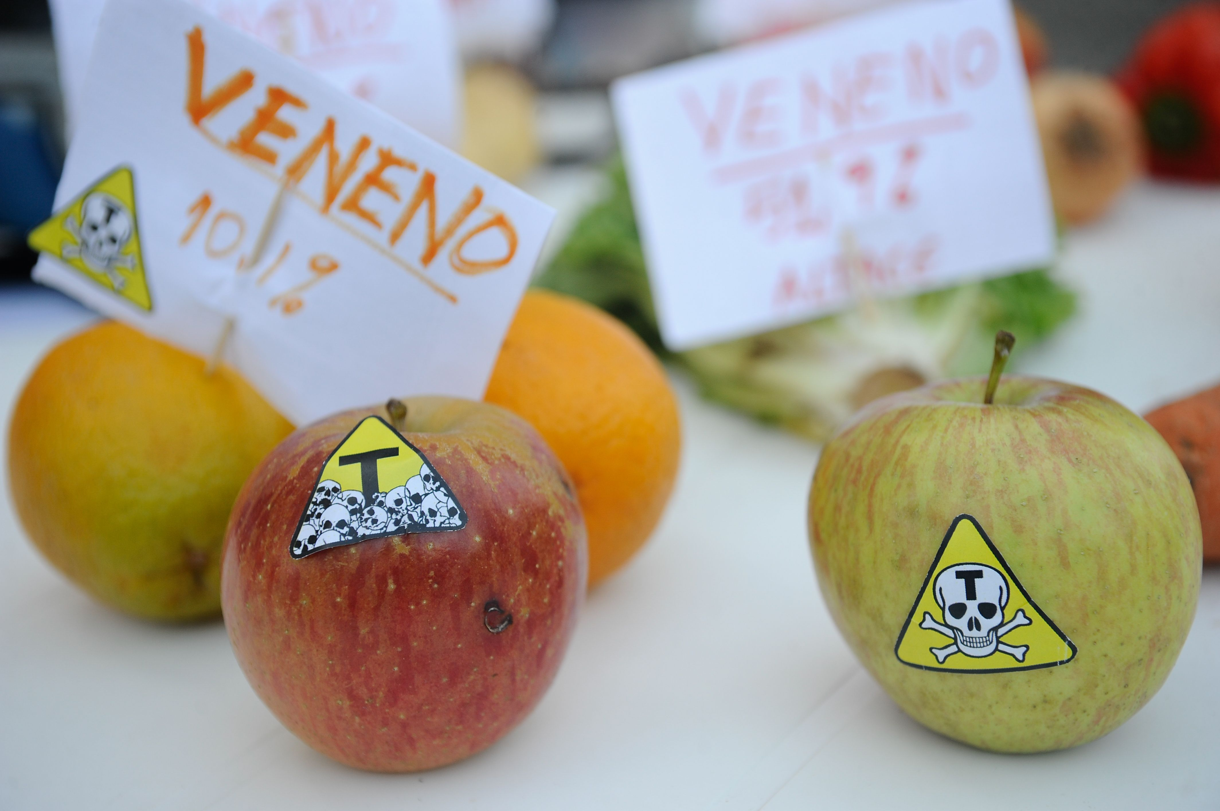 11-12-14_foto_fernando_frazao_campanha_contra_agrotoxicos (1)