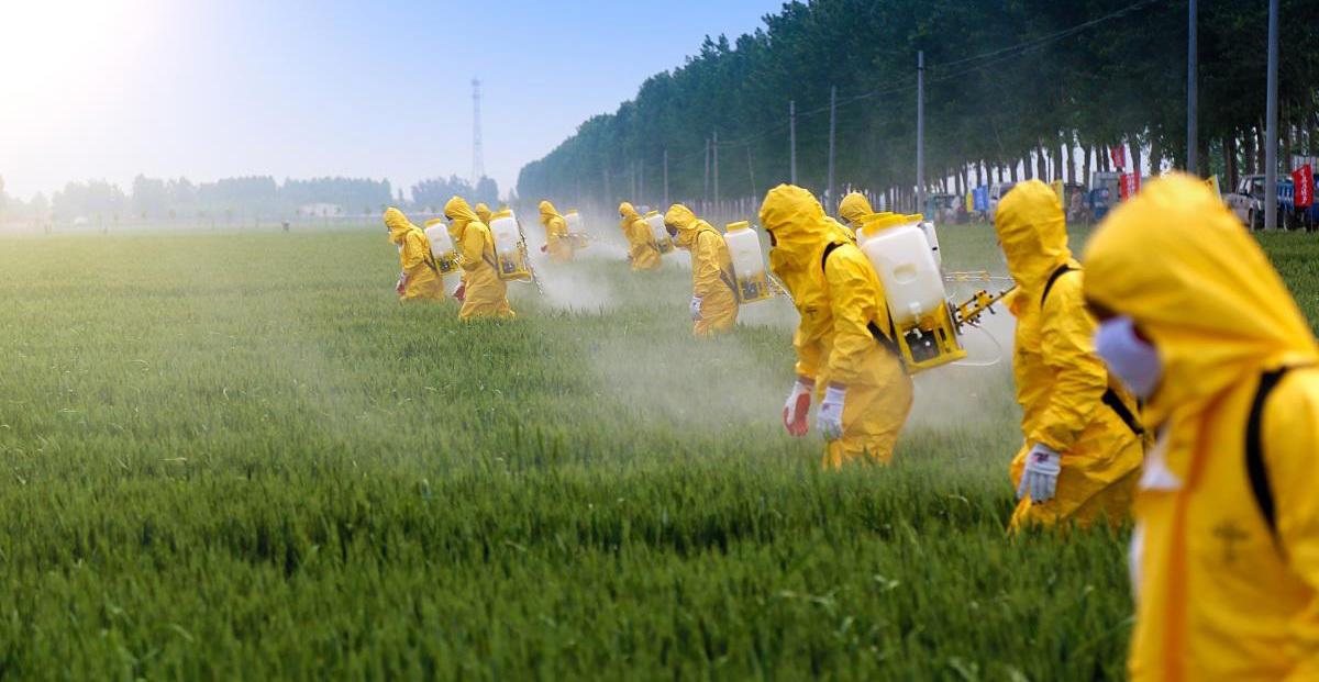 Comissão da Câmara aprova projeto que amplia uso de agrotóxicos no Brasil