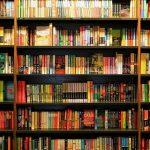 Rede Potiguar de Bibliotecas busca cadastrar todos os espaços de leitura do Estado