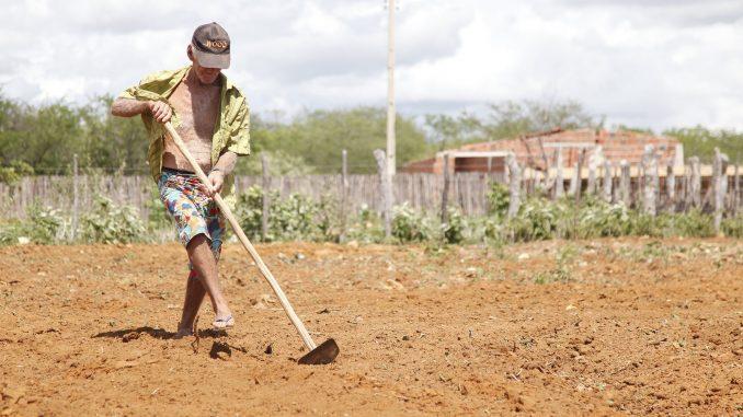 Mais de 900 agricultores em Mossoró estão aptos a receber o Garantia-Safra