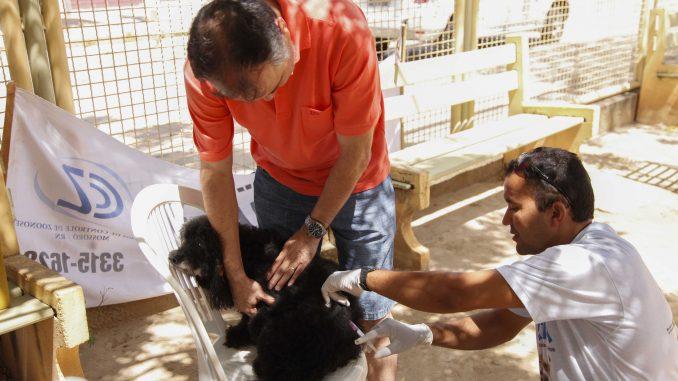 Campanha deve vacinar 42 mil cães e gatos contra a raiva em Mossoró