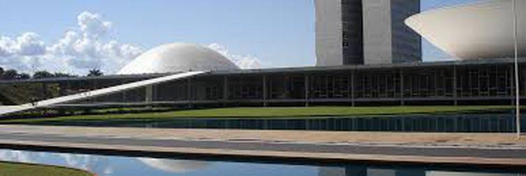 Eleitor votará em dois candidatos para renovar o Senado este ano.   (Agência Brasil)
