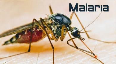 O Ministério da Saúde alerta que, nas regiões fora da Amazônia, apesar das poucas notificações, a malária não pode ser negligenciada, já que se observa uma letalidade ainda mais elevada.