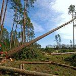 Índios resolvem combater desmatamento e apreendem equipamentos no Pará