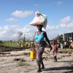 Após ciclone, Moçambique enfrenta risco de surto de cólera