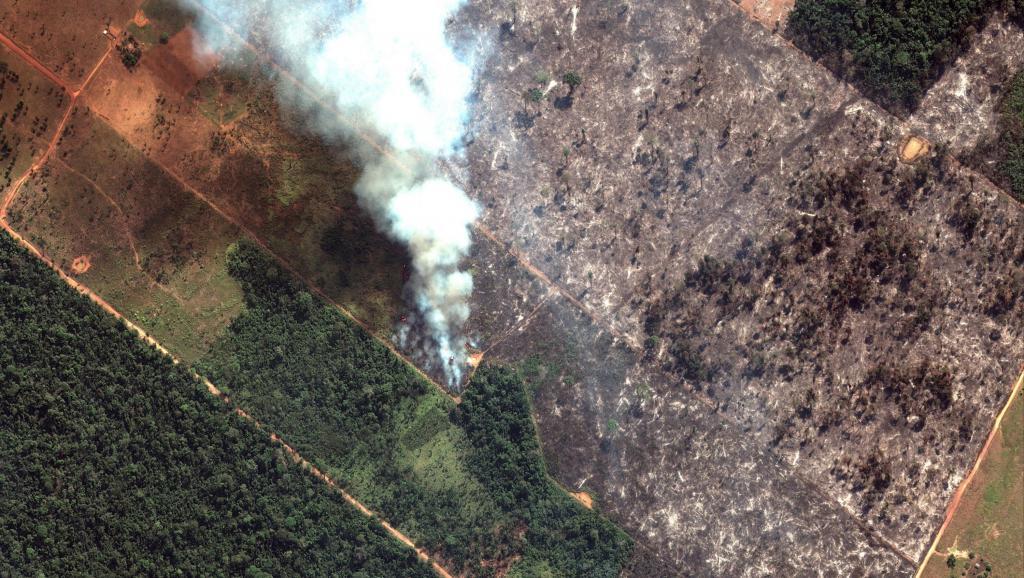 Jornal Le Monde: Queimadas na Amazônia criam batalha política internacional