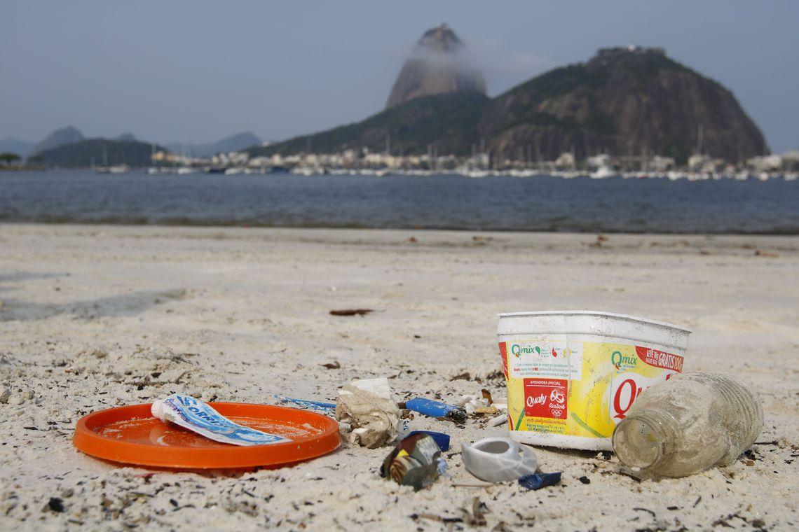 Ministério do Meio Ambiente comemora o Dia Mundial da Limpeza