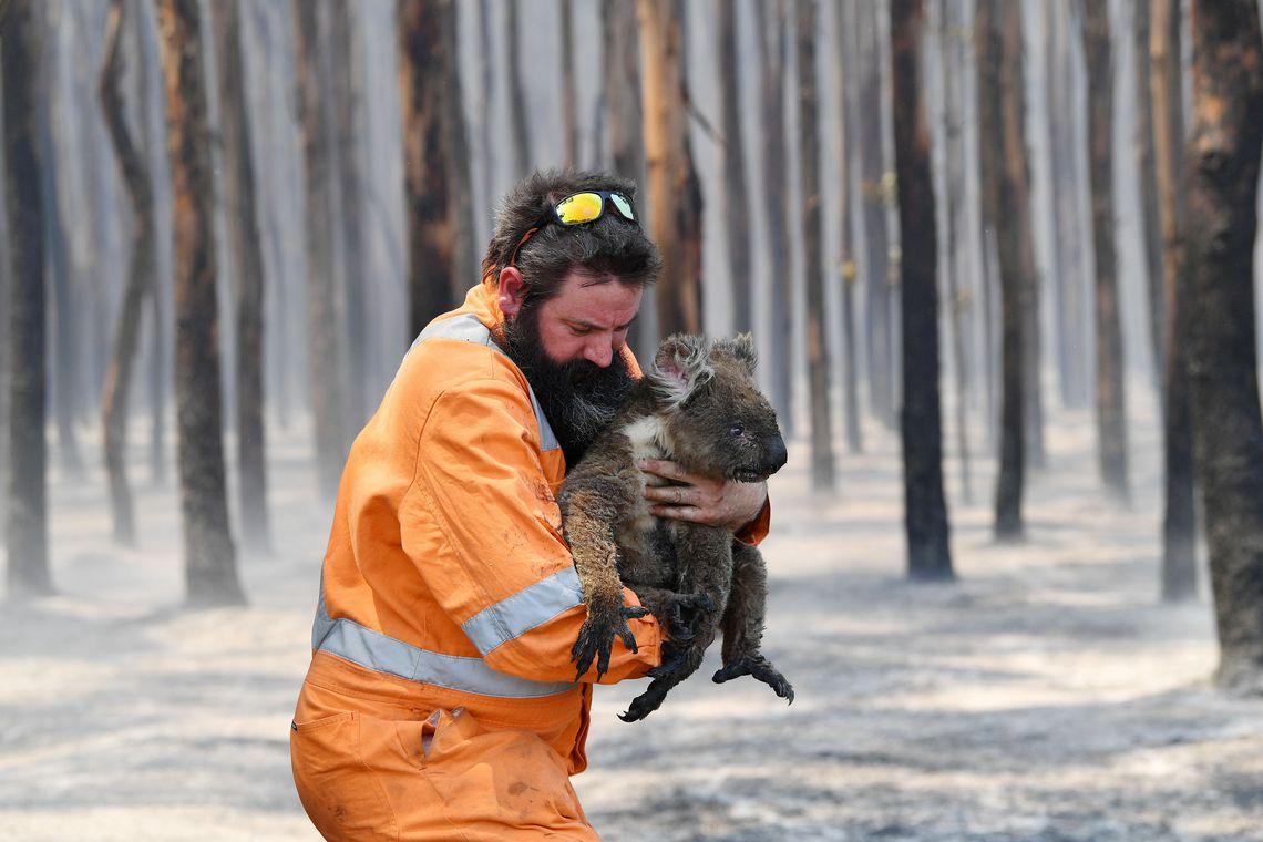 2020-01-07t000000z_674880503_rc2tae94msru_rtrmadp_3_australia-bushfires