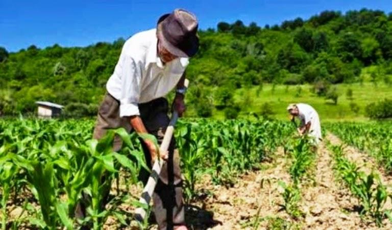 arquivos_noticias_2017_jan_agricultura_familiar_e_sustentabilidade_ambiental
