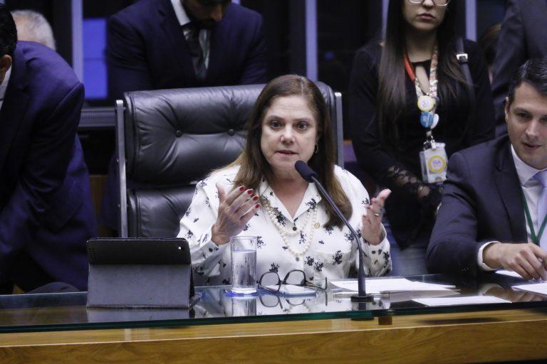 Soraya Santos: a comissão vai trazer indicadores sobre violência obstétrica no País